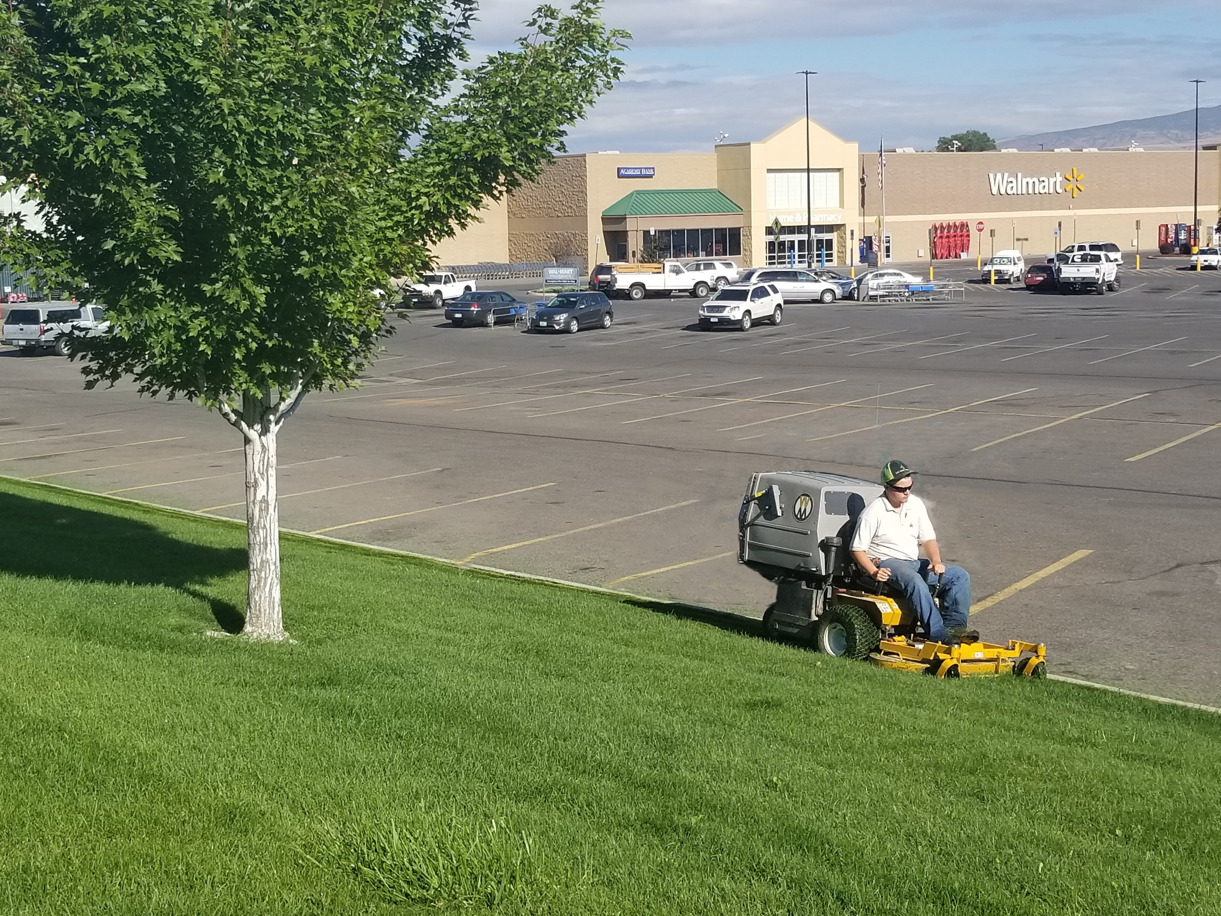 Grass or Lawn Cutting Services Near Me