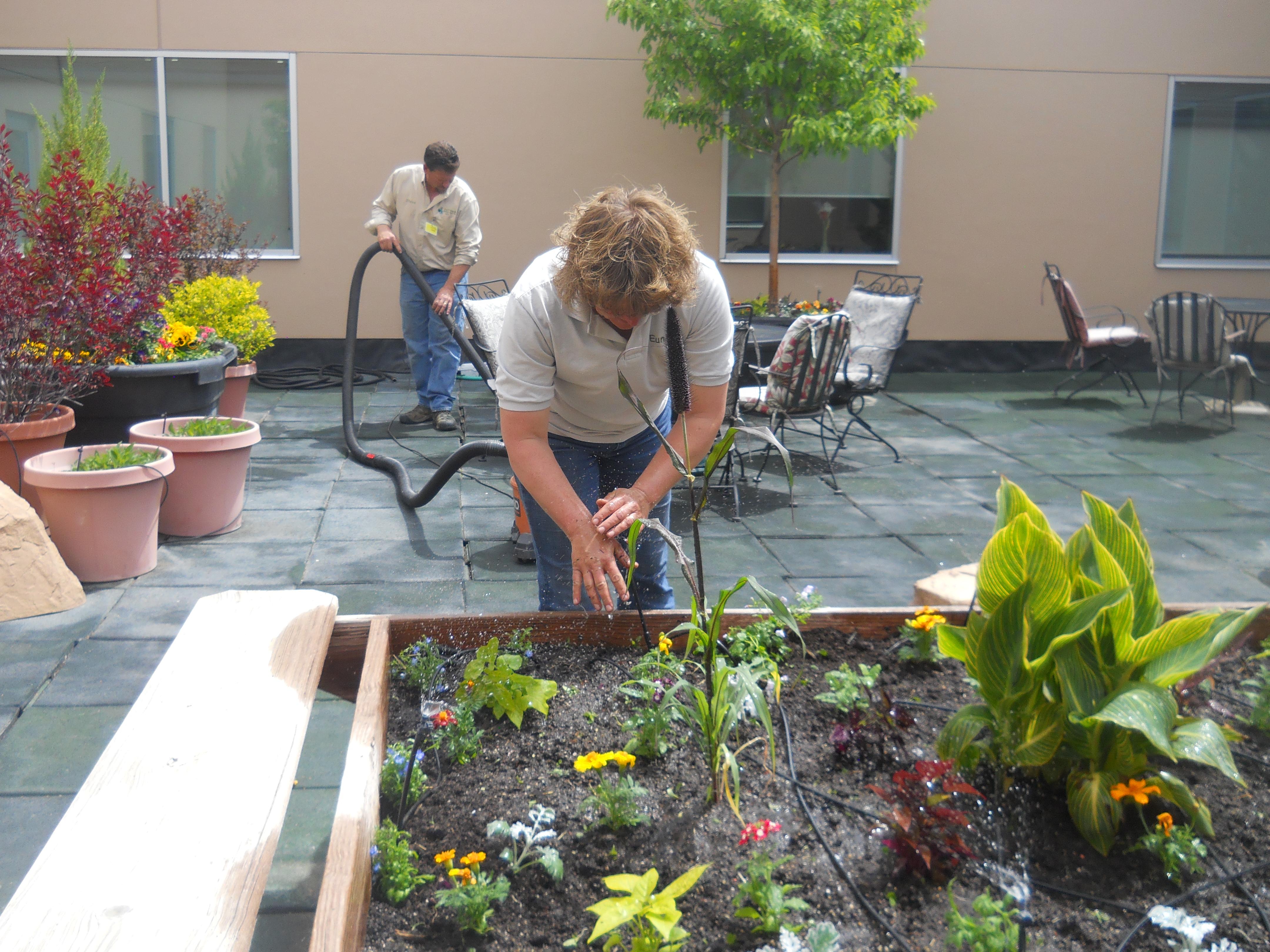 yard cleanup s u0026e wards landscape management