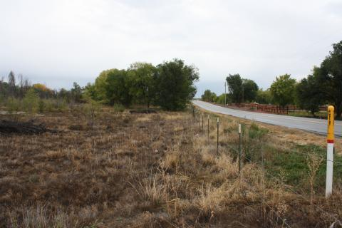 Looking East down South Fence Line