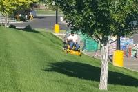 Weekly - Bi-Weekly - Monthly Residential and Commercial Mowing Services